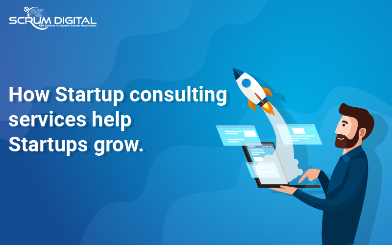Startup consulting Services